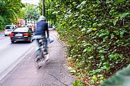 Ein Fahrradfahrer fährt über einen zugewucherten Radweg in der Kieler Straße in Hamburg
