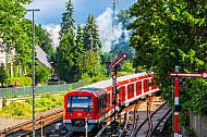 S-Bahn im Bahnhof Hamburg-Blankense