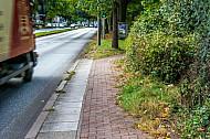 Ein zugewucherter benutzungspflichtiger Fahrradweg an der Breitenfelder Straße in Hamburg