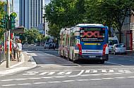 XXL-Bus auf Busspur am Grindelhof in Hamburg