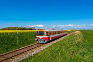 Zug der Lemvigbanen zwischen Rapsfeldern