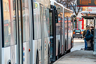 Mehrere Busse an der Haltestelle Grindelhof in Hamburg