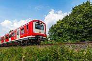 S-Bahn in Hamburg in der Natur