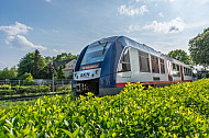 Ein LINT-Triebwagen der AKN in Ellerau in Schleswig-Holstein
