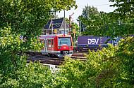 Ein S-Bahn-Zug fährt in Hamburg hinter grünen Bäumen hervor