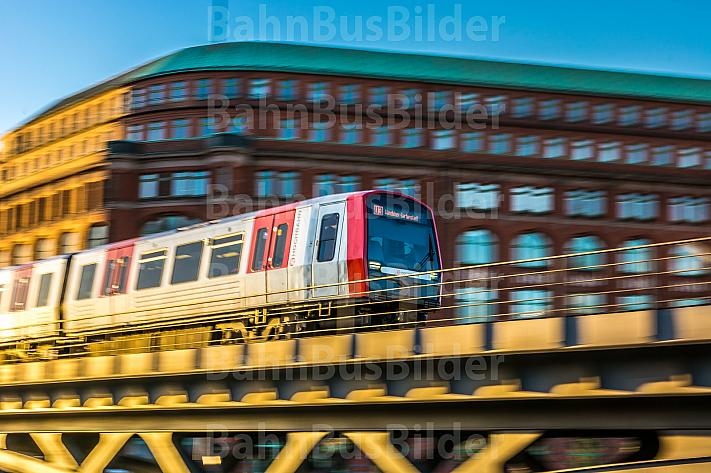 Ein U-Bahn-Zug vom Typ DT5 im goldenen Abendlicht auf einem Viadukt am Baumwall im Hamburger Hafen