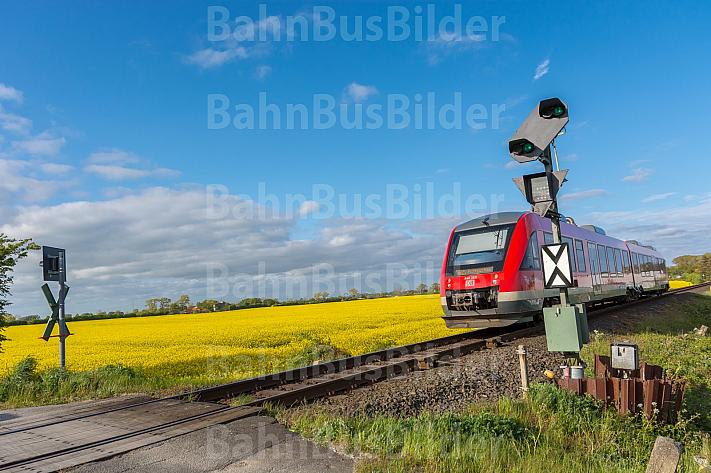 Ein Bahnübergang im Frühling mit Zug und Rapsfeld bei Großenbrode in Schleswig-Holstein