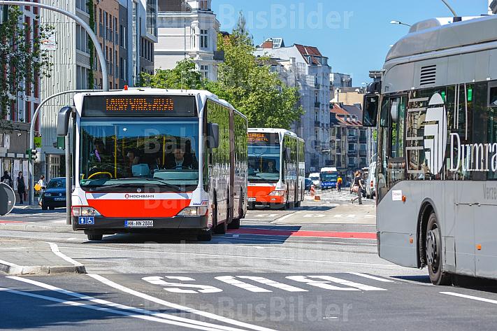 Metrobusse an den Haltestelle Staatsbibliothek in Hamburg