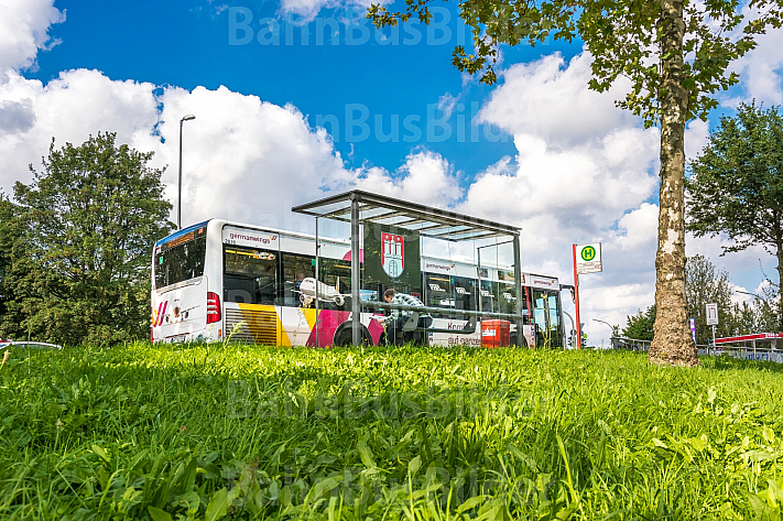 Ein Linienbus steht in Hamburg an der Billstraße an einer Haltestelle