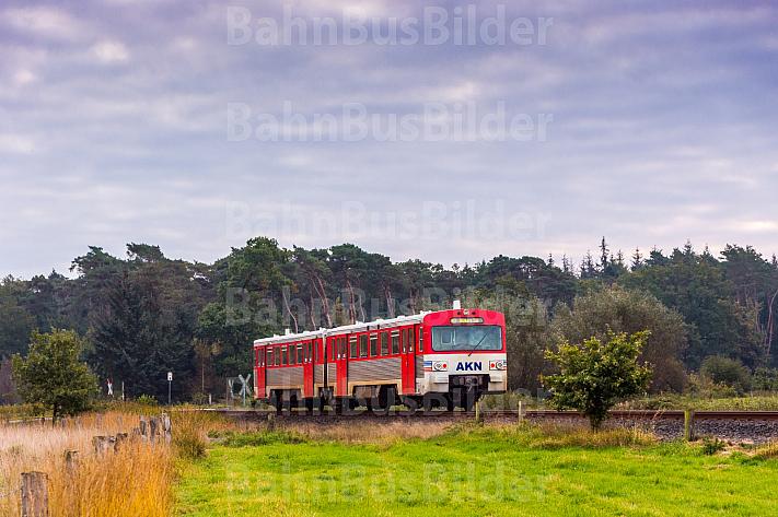 AKN-Triebwagen im Herbst bei Barmstedt