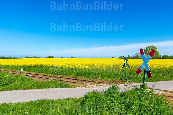 Ungesicherter Bahnübergang an der Museumsbahnstrecke zwischen Schönberger Strand und Schönberg in Schleswig-Holstein