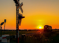 Nohab-Lokomotive der Lemvigbanen