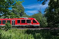 Ein Lint-Triebwagen fährt auf der Bäderbahn (Vogelfluglinie) in Schleswig-Holstein durch die Natur von Scharbeutz