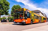 Metrobus 6 am Rathausmarkt in Hamburg